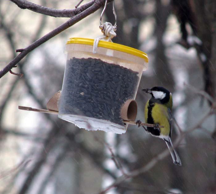 Зимние кормушки для птиц своими руками фото оригинальные идеи
