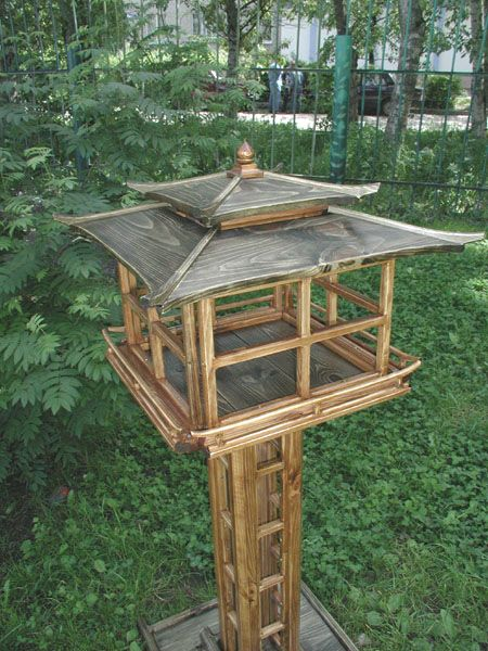http://www.rbcu.ru/upload/forum/upload/666/9884_birdfeeder1r.jpg