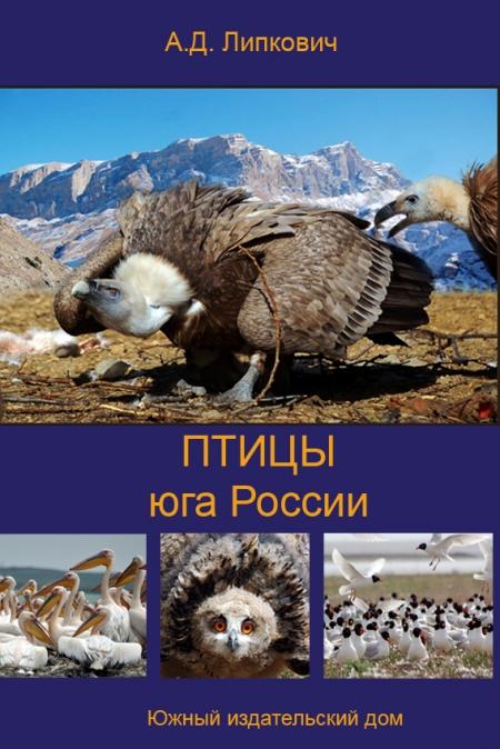 Птицы юга россии