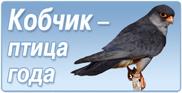Птица года