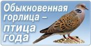 Общероссийская общественная организация Cоюз охраны птиц России