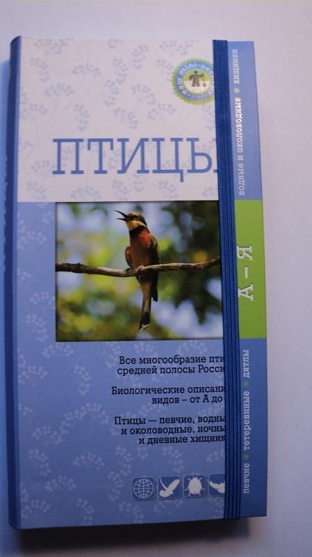 рассказ зяблик д кайгородова читать
